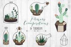 Check out Hand drawn Succulents in Terrarium by lokko studio on Creative Market