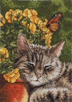 Bucilla 45517 Counted Cross Stitch Heirloom Treasures Picture Kits, Afternoon Nap by Bucilla, http://www.amazon.ca/dp/B0040XTP22/ref=cm_sw_r_pi_dp_DBb8sb1THP1EF