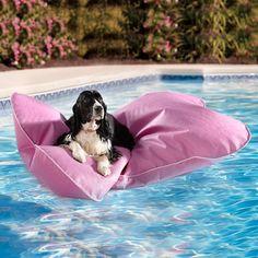 Aqua Pup Pool Float