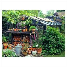 Someday I want my potting shed to be covered like this so you can't see the ugly on the outside!
