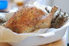 Chicken and Poultry Recipes