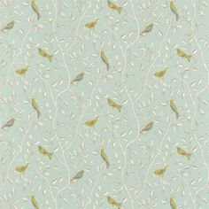 Sanderson - Traditional to contemporary, high quality designer fabrics and wallpapers | Products | British/UK Fabric and Wallpapers | Finches (DOPNFI203) | Options 10 Prints