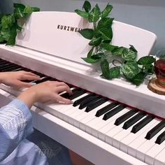 Violin Music, Piano Songs, Music Songs, Music Videos, Dream Music, Music Is Life, Music Aesthetic, Aesthetic Videos, Beautiful Romantic Pictures