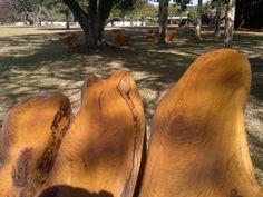 antes e depois um jardim de formações em madeira