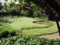 Ulla Molin's garden