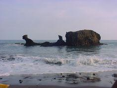 Playa El Tunco, La Libertad Bald Eagle, Places To Visit, Water, Travel, Outdoor, Animals, El Salvador, Gripe Water, Outdoors