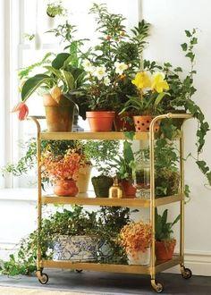 Já pensou em criar uma horta móvel? A ideia é perfeita para espaços compactos e até para mover as plantinhas caso falte luz solar.
