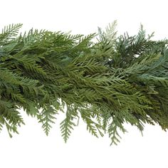 Cedar Garlands are fantastic and fragrant holiday decorations which have even found their way into winter wedding and event decor. Whether you are decorating your home, office  or some other venue, consider adding Cedar Garlands or bulk Christmas Greens into the mix! Visit GrowersBox.com for more information.