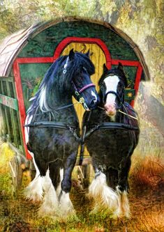 Caravan Gypsy Vardo Wagon: A wagon and horses. Historically inaccurate - only howmens wagons, not vardos, were pulled by two horses. A vardo had to be light enough to be pulled by ONE horse. Gypsy Caravan, Gypsy Wagon, Gypsy Life, Gypsy Soul, Bohemian Gypsy, Boho, Gypsy Horse, Gypsy Living, Into The West