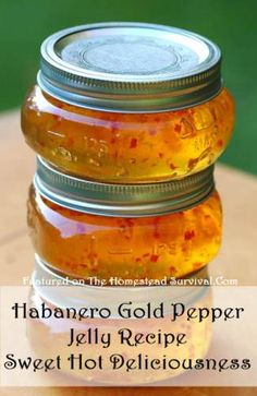 Grace your table with this Habanero Gold Jelly canning recipe to the delight of your family with its sweet hot deliciousness. Plus it just looks so Habanero Recipes, Chilli Recipes, Jam Recipes, Canning Recipes, Sauce Recipes, Canning Labels, Mango Jelly, Mango Jam, Deserts