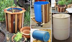 www.goodshomedesign.com 25-creative-diy-ways-to-show-off-your-plants