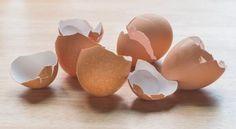 Nem is gondolnánk, hogy a tojás héját mennyi mindenre használhatjuk. Az összezúzott tojáshéj remekül alkalmazható kártevők irtására, bőrpuhítónak, tisztítószerként vagy madáreleségként is. Love Natural, Natural Health, Healthy Life, Diy And Crafts, Stuffed Mushrooms, Candle Holders, Blog, Place Card Holders, Herbs