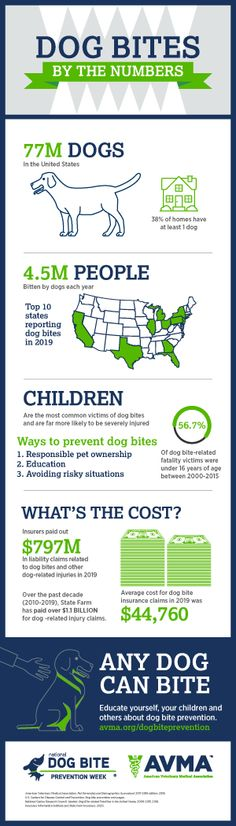 National Dog Bite Prevention Week | American Veterinary Medical Association No Response, Medical, Education, Dog, Diy Dog, Dogs, Teaching, Training, Educational Illustrations