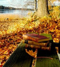 Things I love.  Fall weather and books. #oldbooks