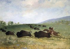 Native American George Catlin An Osage Indian Lancing a Buffalo, kK