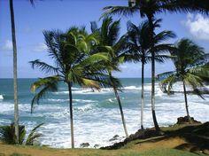 Praia Havaizinho – Itacaré (BA)    A pequena praia é alcançada por uma trilha de 15 minutos no meio da Mata Atlântica, a partir do km 12 da rodovia BA-001