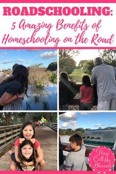 Roadschooling: 5 Ama