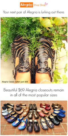Your next pair of Alegria is lurking out there... | Alegria Shoe Shop #AlegriaShoes #closeouts