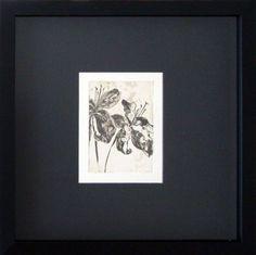 Drawing Box   Quadro da Semana   Lillies - Teresa Infiesta