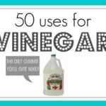 Did you know vinegar could possibly be the last household cleaner you'll ever need?  Click through the slideshow to see all the uses for vinegar. Holy cow! Who knew?! I better go buy a few gallons of vinegar.