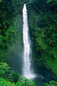 Akaka Falls, Hilo, Big Island of Hawaii