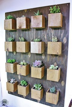 Indoor Cool Cactus & Succulent Projects 47 home décor ideas, dream home, #home furniture