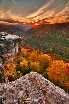 Love the POV AND THE SUN'S RAYS CAUGHT BY THE PHOTOGRAPHER.    Lindy Point - Blackwater Falls State Park - West Virginia