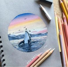 Here's a new drawing of a little killer whale 🐋 Cool Art Drawings, Realistic Drawings, Colorful Drawings, Pencil Drawings, Art Sketches, Horse Drawings, Prismacolor Drawings, Whale Drawing, Sea Drawing