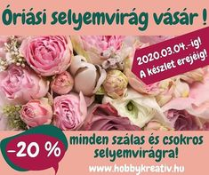 Cabbage, Vegetables, Vegetable Recipes, Veggie Food, Cabbages, Collard Greens, Veggies, Brussels Sprouts, Kale