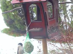 Põhjatihane, rasvatihane ja põldvarblane Bird Feeders, Wind Chimes, Outdoor Decor, Home Decor, Decoration Home, Room Decor, Home Interior Design, Home Decoration, Teacup Bird Feeders