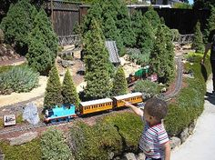 Dwarf and miniature conifers + Garden railway = good times!