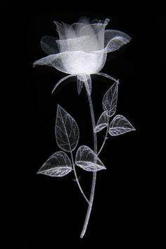 Mal ein Test Rose in Glas 3D gelasert und ne LED Lampe