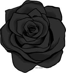 Black Rose Tattoo by
