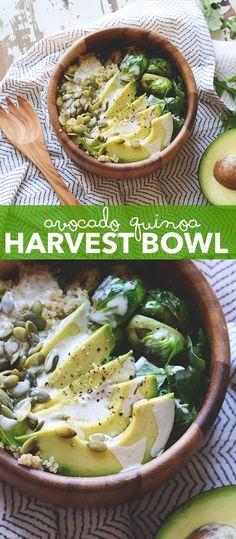 Avocado Quinoa Harvest Bowl aka your new favorite fall recipe