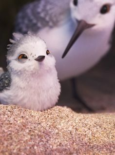 Piper Wins the Oscar for Best Animated Short Film and Now We Pixar Shorts, Disney Shorts, Disney Pixar, Disney Art, Pixar Movies, Disney Movies, Piper Pixar, Piper Bird, Animals And Pets