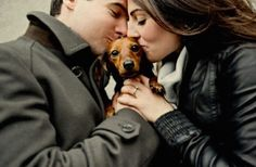#dachshund #wiener #love