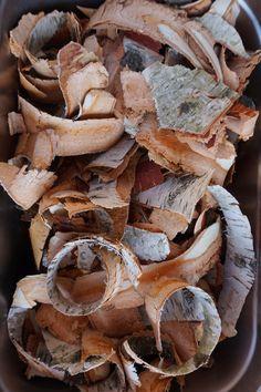 Tree Bark Bread — Traditional Nordic Cuisine