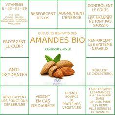 The Big Diabetes Lie-Diet - Les bienfaits des Amandes Smart Nutrition, Proper Nutrition, Fitness Nutrition, Health And Nutrition, Nutrition Tracker, Nutrition Shakes, Proper Diet, Nutrition Guide, Nutrition Education