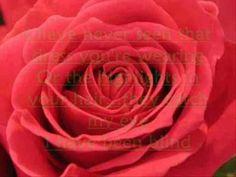 Chris de Burgh - Lady In Red (Lyrics)