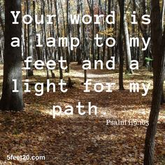 #LampToMyFeet #Psalm119 #peace #5feet20 #inspiration