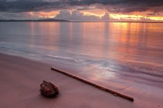 Denarau Island. Nadi, Fiji.