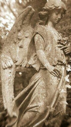 Beautiful angel in sepia