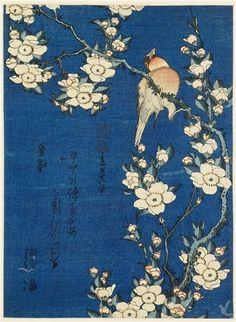 Katsushika Hokusai, Bouvreuil et cerisier pleureur, 1834, estampe nishike-e, musée Guimet Paris