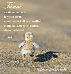 mietelauseet - Google-haku Carpe Diem Quotes, Rumi Quotes, Motivational Words, Inspirational Quotes, Finnish Words, Strong Words, Truth Of Life, Sad Love Quotes, Meaning Of Life