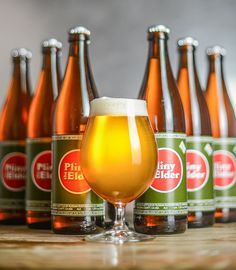 /// Pliny the Elder - one of the best beers in the world