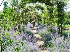old fashioned gardens - Google Search