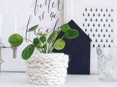 Auf der Mammiladen|n-Seite des Lebens | Personal Lifestyle Blog | Blumenübertöpfe selber aufhübschen mit Modeliermasse, durch Fingerstricken und mit Korkpapier | DIY Geschenkideen | Pilea Peperomioides