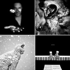 Black & White Photography by Benoit Courti.