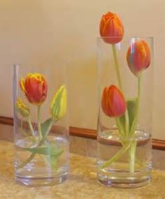 modern tulip arrangements - Yahoo Image Search Results