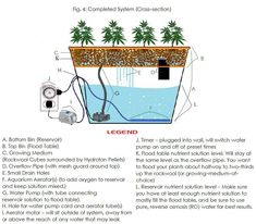 Build Your Own #Hydroponic System For Less than $100